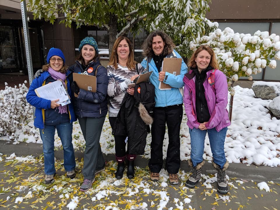 Sister District volunteers canvassing in cold Colorado